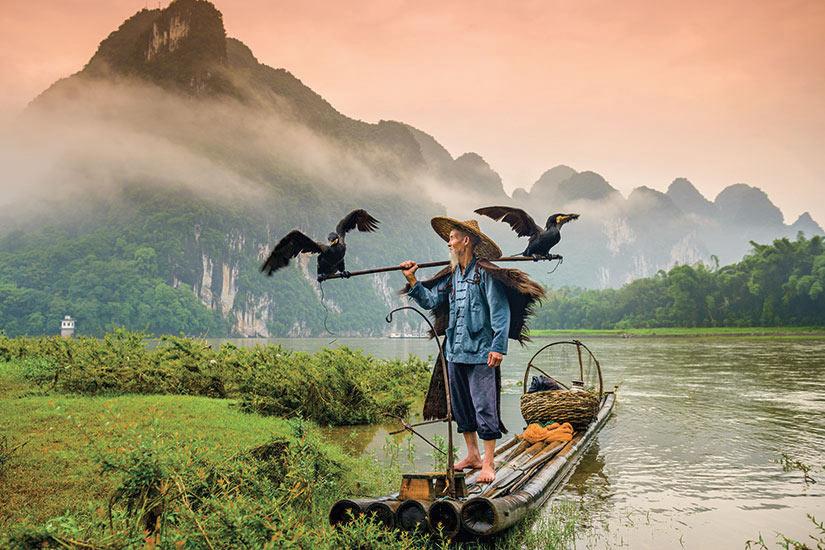 image Chine pecheur cormoran traditionnel fonctionne sur la riviere Li Yangshuo  fo