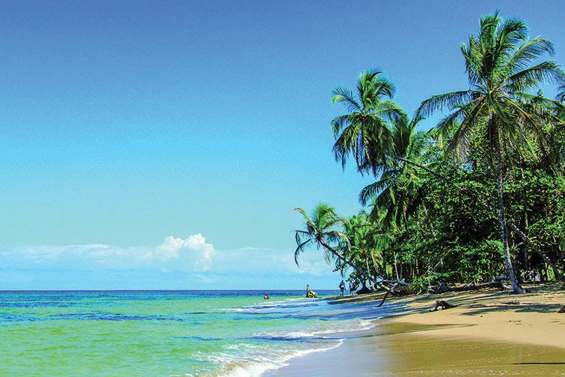 Super Circuit au Costa Rica : Le Costa Rica, le Paradis Vert 14 jours  NI12