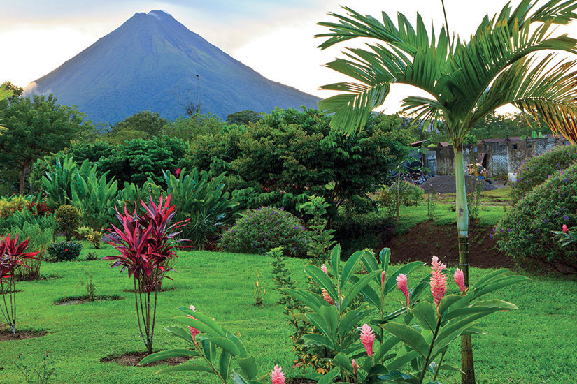 image Costa Rica Volcan Arenal palmier panorama  it