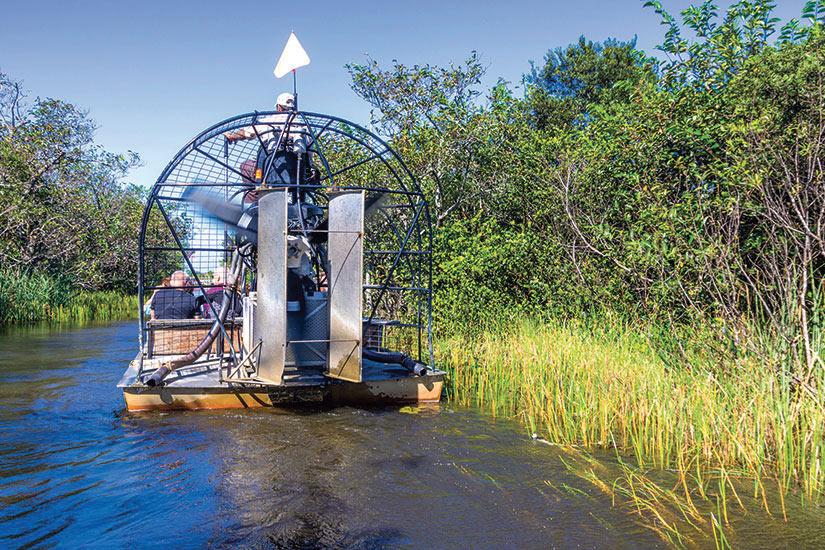image Etats Unis Everglades Hydroglisseur  fo