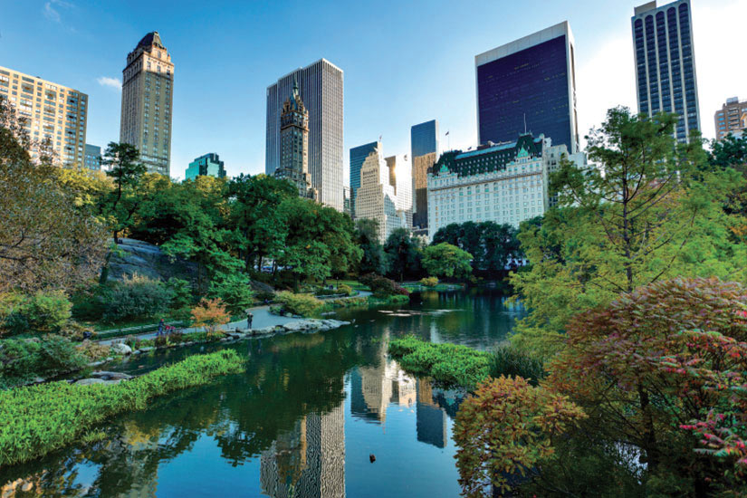 image Etats Unis New York Central park  it