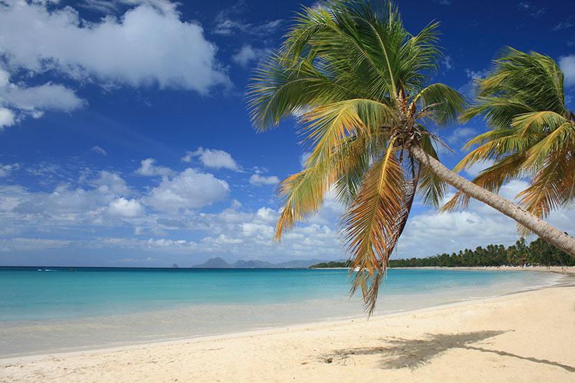 image France Martinique plage  it