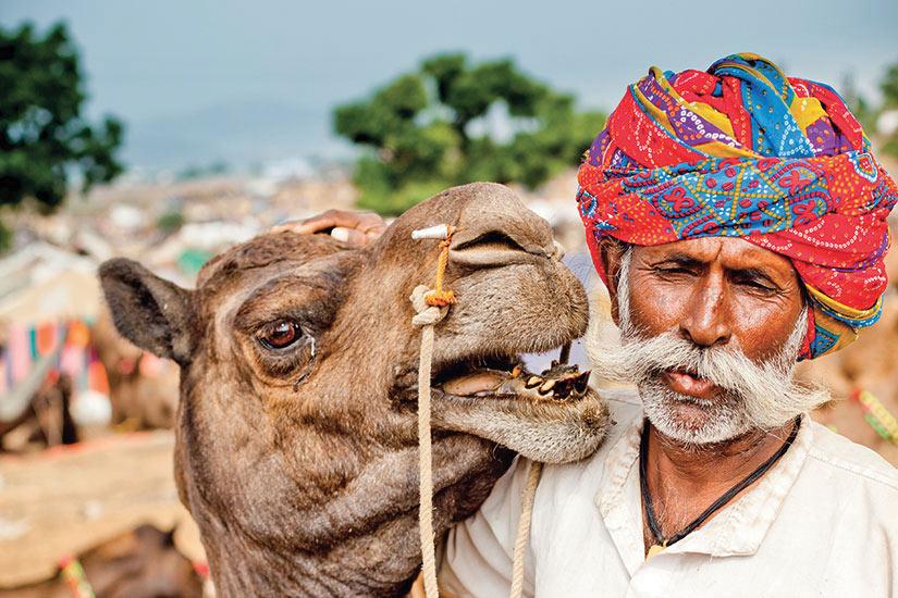 image Inde Pushkar indien avec son chameau a Camel Fair  it
