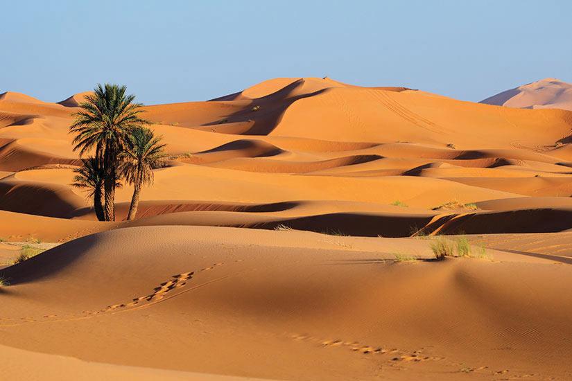 image Maroc Merzouga  fo
