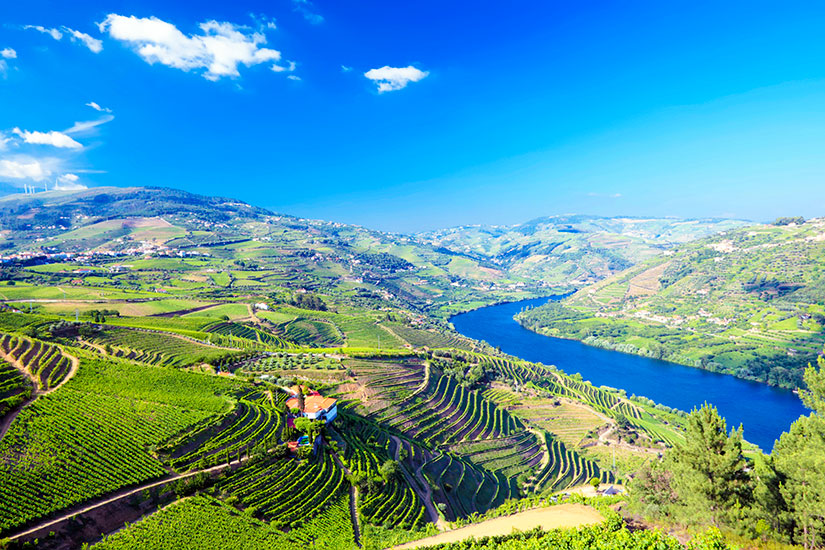 image Portugal Vallee du Douro panorama  it