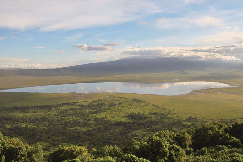 image Tanzanie Cratere Ngorongoro  it
