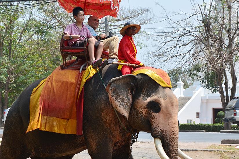 image Thailande Ayutthaya equitation elephants  fo