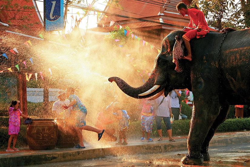 image Thailande Chang Songkran elephante jouer avec leau  fo
