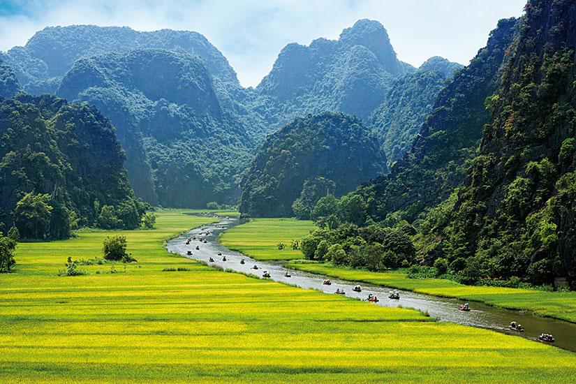 image vietnam ninhbinh champ riz riviere  fo