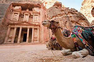 circuit jordanie camel en face de la tresorerie al khazna  fo