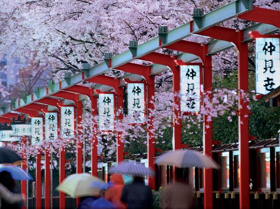 circuit au japon le japon pays du soleil levant 11 jours bt tours. Black Bedroom Furniture Sets. Home Design Ideas